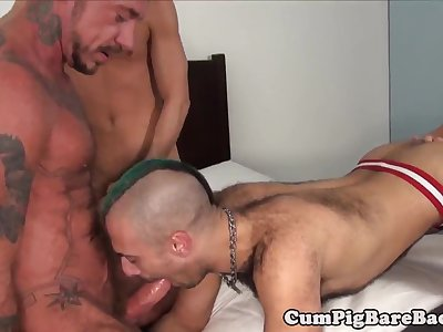 bears pounding big ass in nasty foursome